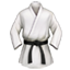:martial_arts_uniform: